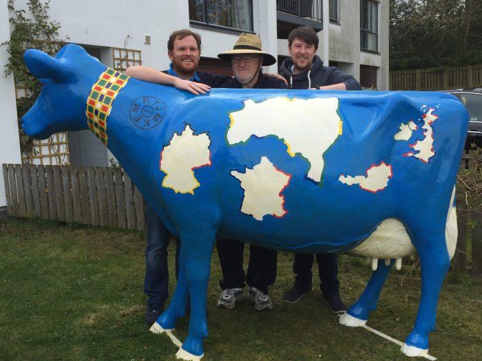 Blue Balerno Model Cow