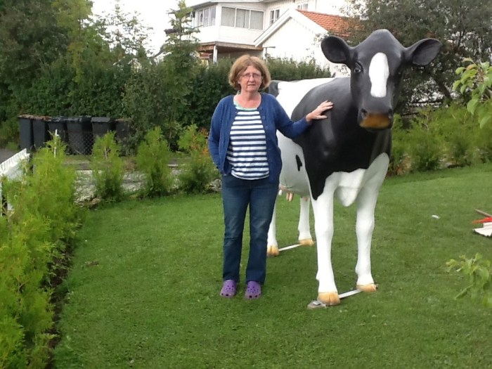 Black and White Model Cow at home in Norway