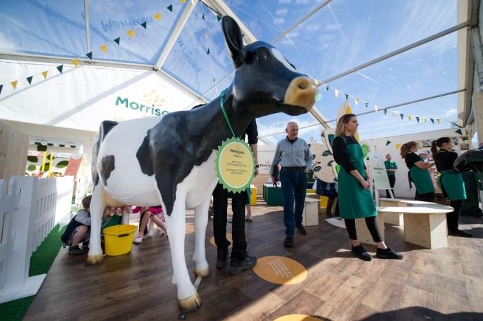 3D Milking Cow Model at Royal Highland Show