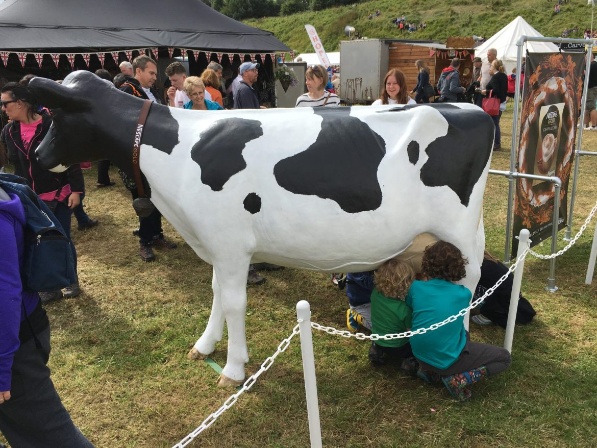 Model Milking Cow at Dalston Show