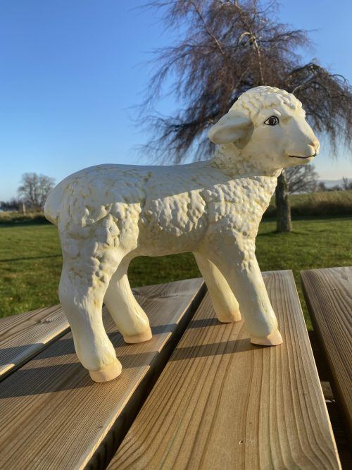 Lamb Model in Sunshine