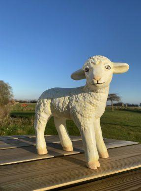 Lamb Model Standing
