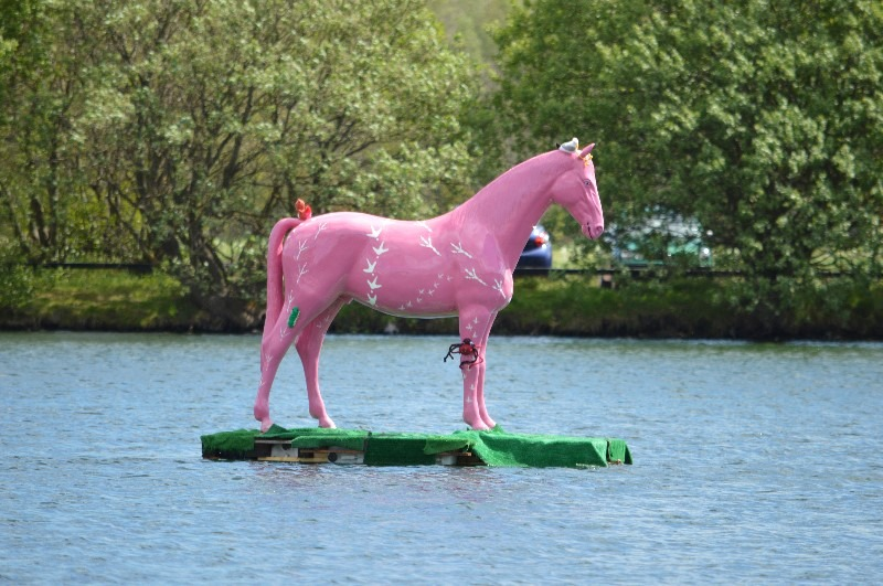 Life Size Model Pink Horse