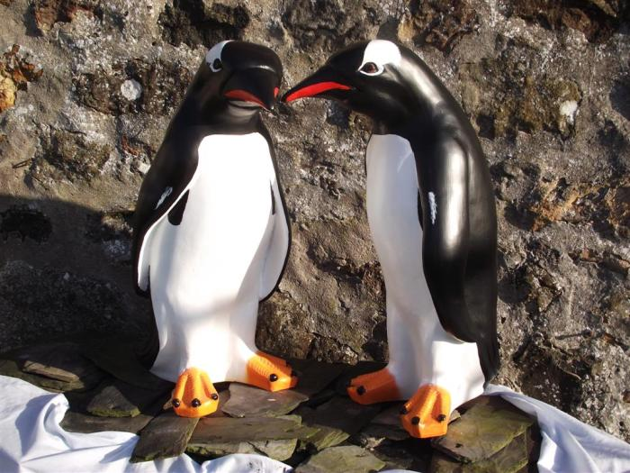 Gentoo Penguin Models