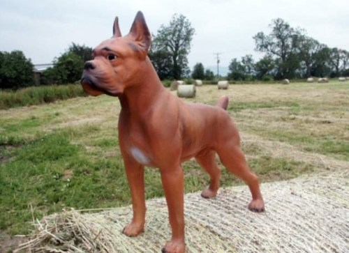 Fibreglass Resin Boxer Dog Model