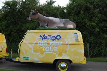 Cow Lying