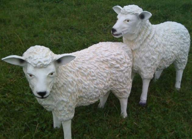 Sheep Model Facing to Left