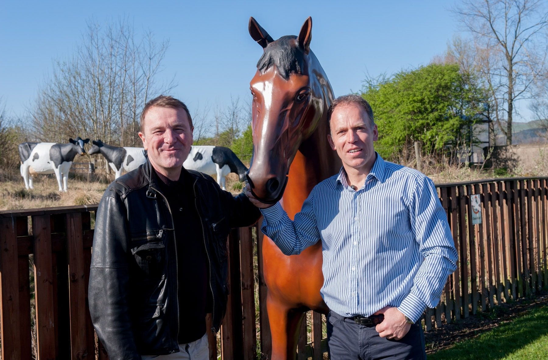 Phil Tufnell & Bay Horse Model