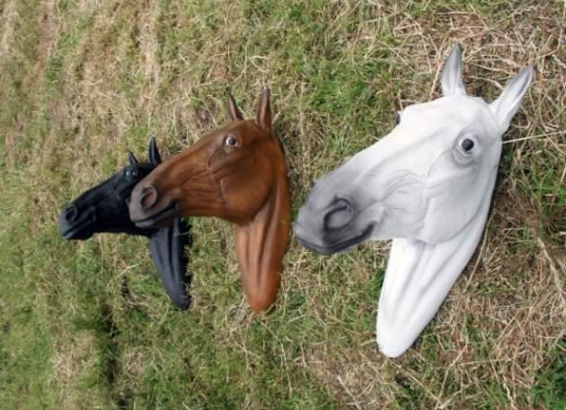 Life Size Horse Head Model