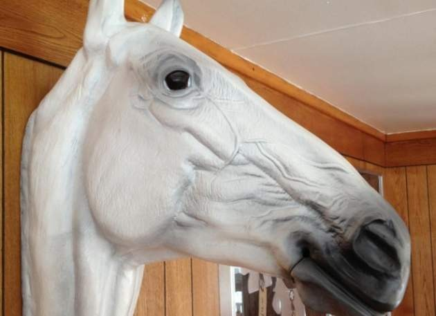 Horse Head Model