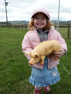 Mini Pig Boar Model