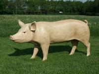 3D Life Size Model Boar Pig