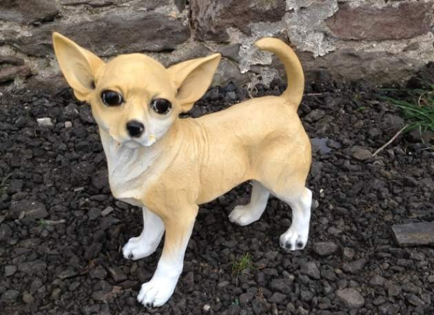 Life Size Model Chihuahua