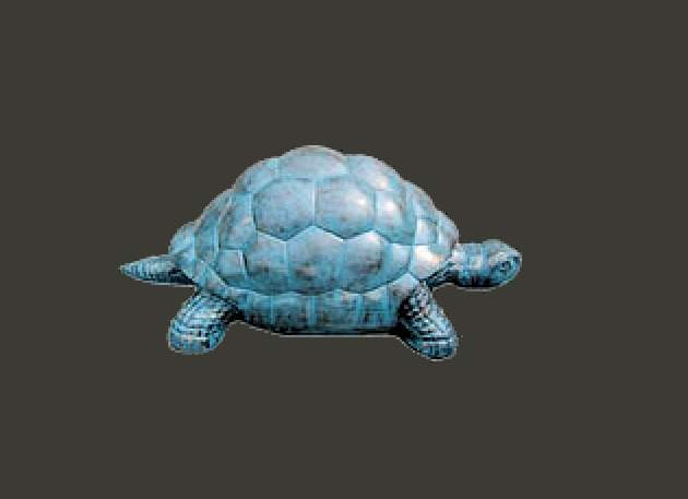 Life Size Giant Turtle Model