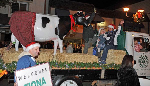 California Milking Cow