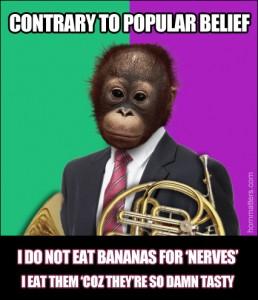 monkey-bananas