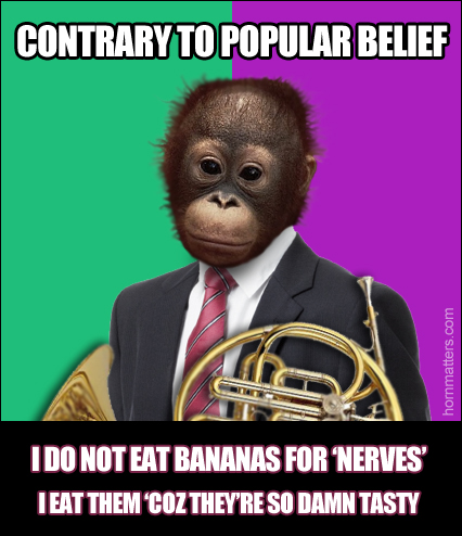 Monkey Bananas Horn Matters A French Horn And Brass Site And