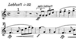 Konzertstuck-snip