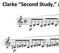 Clarke-snip