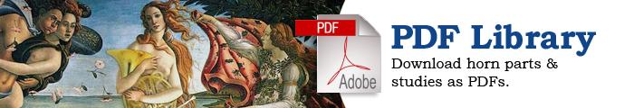 pdf-banner-ad