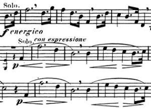 Strauss-1-breaths