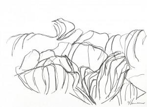 stykkevis-natur-hornskov1-web