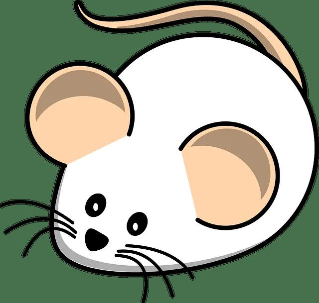 rata-ratón-horóscopo-chino, astrología china, zodiaco