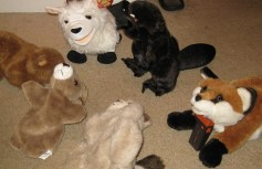 Yep, I have a fair selection of the critters. I use them for puppet shows. Wacky, whimsical, puppet shows.