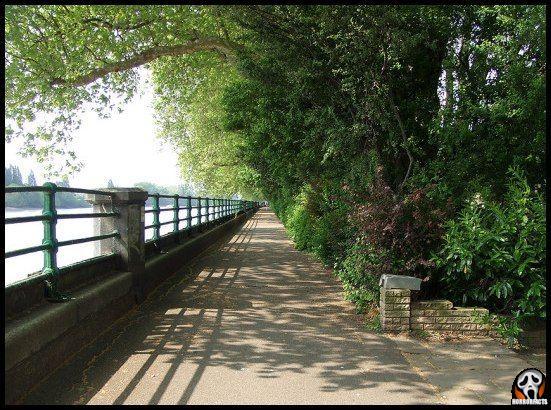 Bishops Park in London, England