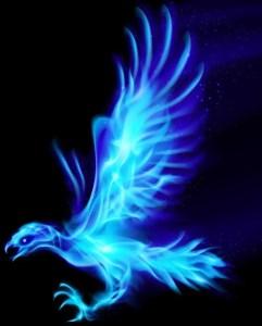 Phoenix Kai