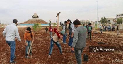 حملة لزرع الأشجار بريف حمص الشمالي