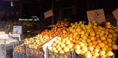 فتح معبر مورك ينعش الحركة التجارية في إدلب