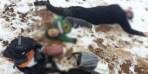 10 سوريين ضحية المهربين على الحدود اللبنانية