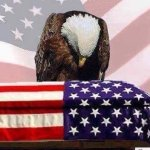 Eagle praying over flag draped coffin