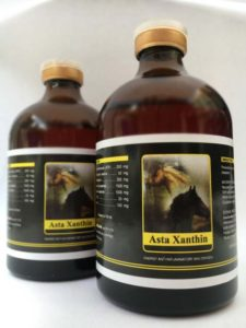 Asta-Xanthin-race-Energy-and-oxygen-horseandcamelsupplies.com