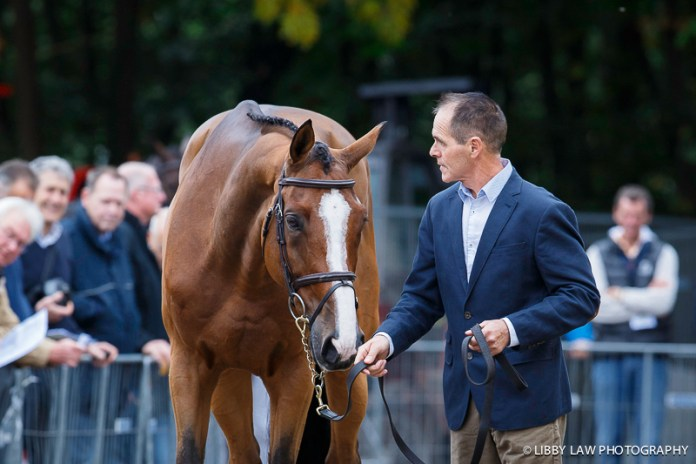 Blyth Tait with Xanthus III at Military Boekelo-Enschede CCIO3* CREDIT: Libby Law COPYRIGHT: LIBBY LAW PHOTOGRAPHY