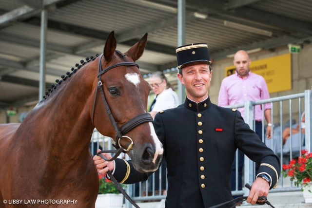 Love a man in uniform? Check out this Frenchman then. Arnaud Boiteau with Quoriano Ene HN at the first trot up at Luhmuhlen. (Image: Libby Law)