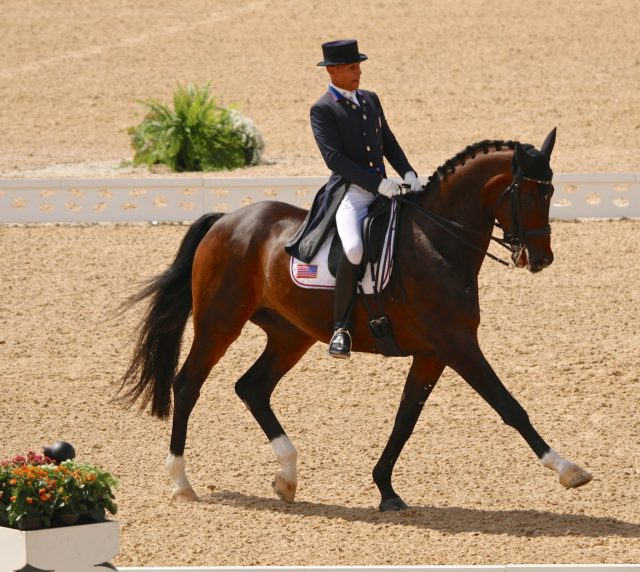 Steffen Peters on Legolas 92 from US (Image: Jane Thompson)