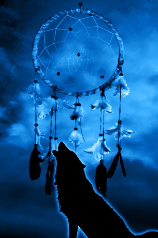 Cute Dreamcatcher Wallpaper Connecting To Your Totem Animal Webinar Horse Amp Wolf