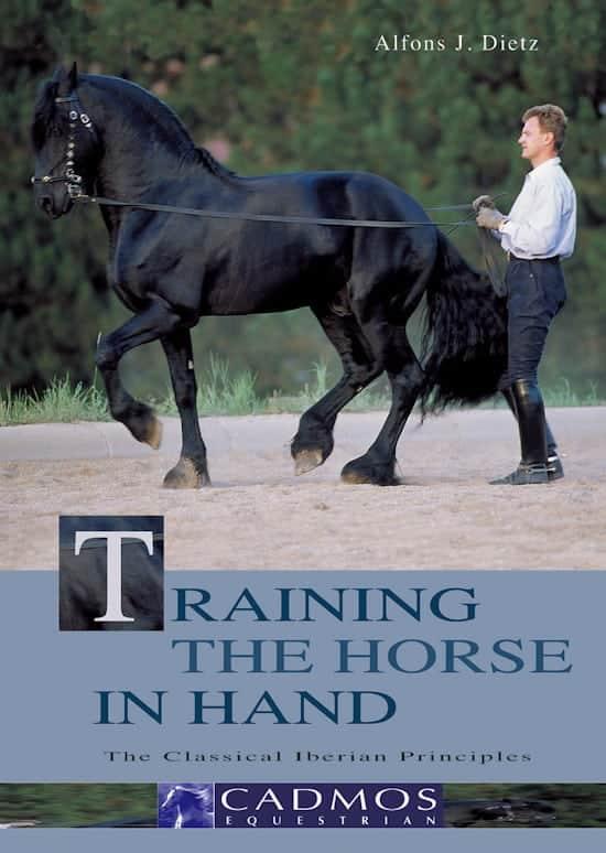training_the_horse_in_hand_traening_fra_