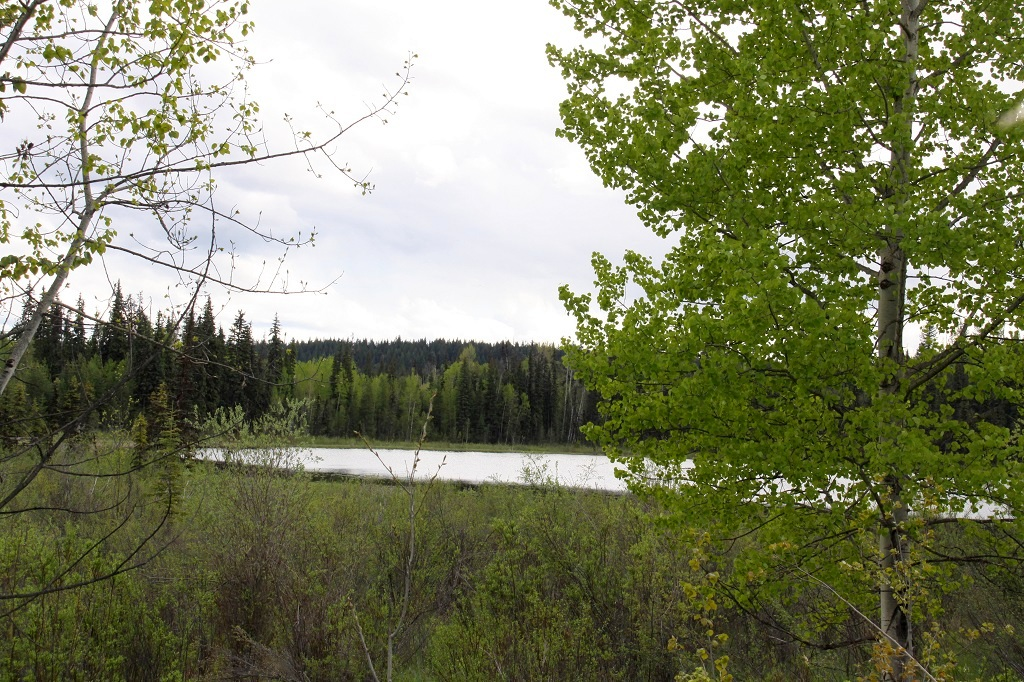 New Price! Moffat Creek Acreage 765 Acres - Horsefly, BC