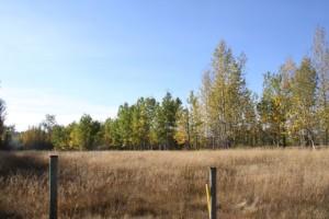 Horsefly grassland acreage