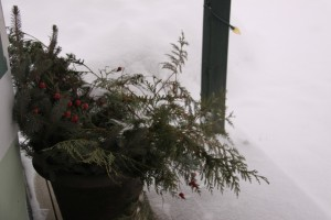 evergreen decorations