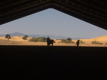 The Clinic at Atwood Ranch