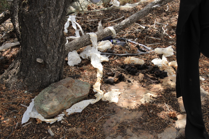 These guys don't even try to bury their shit or their used toilet paper at this homeless camp by a proposed freeride trail in Horse Gulch.