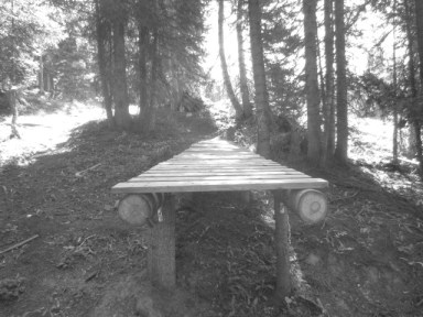 Part of a non-system, unsanctioned trestle ledge on a trail that freeriders have used in the past up at Purg.