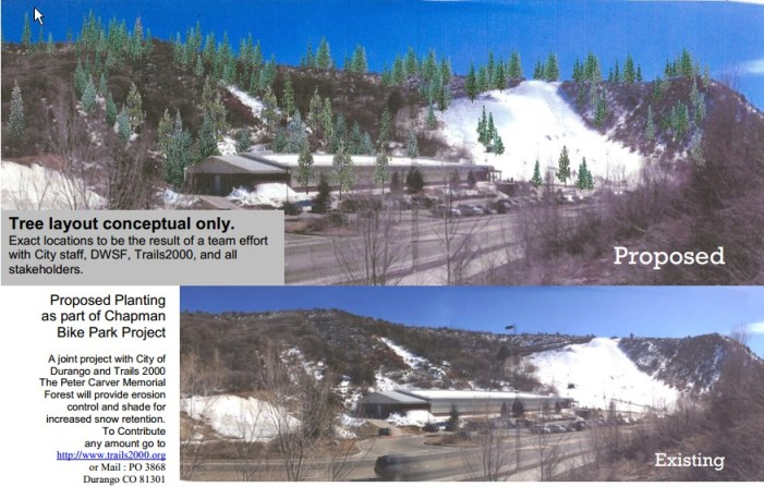 A proposed tree plantation  at Chapman Hill would be named after Peter Carver, a local who recently died in an avalanche just north of Silverton.