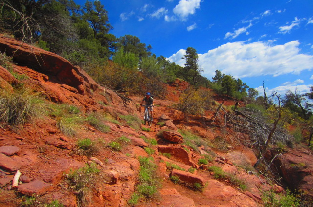 You've gotta love the sandstone with hues of orange and red in it towards the lower half of the trail.