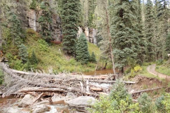 A log jam along Hermosa Creek Trail.