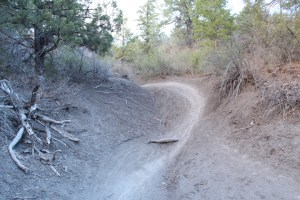 Star Wars Trail in Durango would be the subject of discussion at a Natural Surface Trail System Board Committee meeting, one would hope.